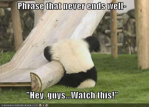 cute falling lolpanda lolpandas oops panda - 1350861568