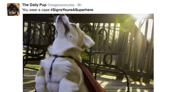 twitter IRL hashtag superhero - 1351173