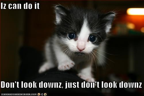Iz can do it  Don't look downz, just don't look downz