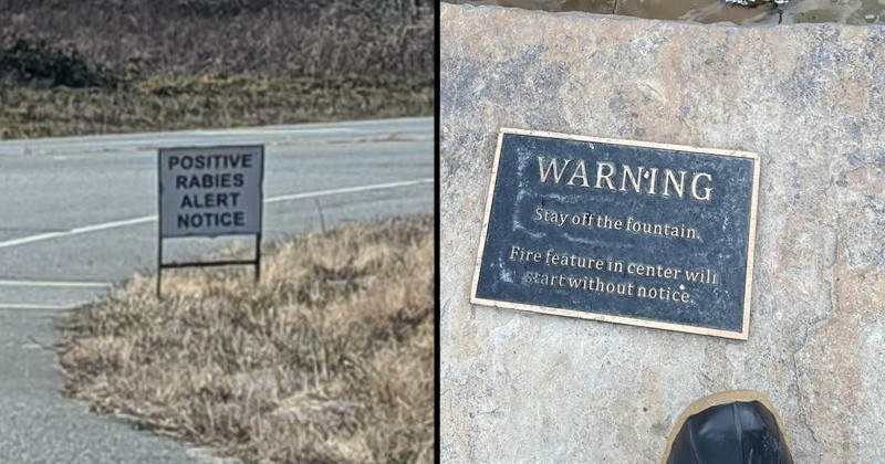 warning signs that are weird and scary | STATE LAW STOP PEDESTRIANS CROSSWALK POSITIVE RABIES ALERT NOTICE | WARNING Stay off fountain, Fire feature center will start without notice.