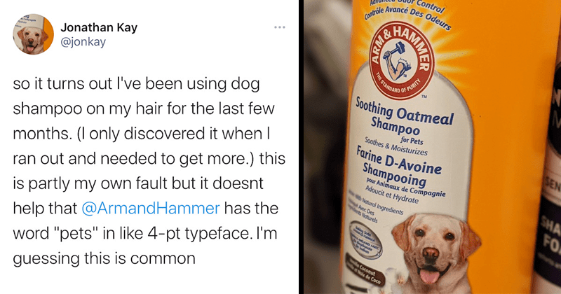 "Twitter roasts Jonathan Kay of Quillette for using Arm & Hammer dog shampoo | so it turns out I've been using dog shampoo on my hair for the last few months. (I only discovered it when I ran out and needed to get more.) this is partly my own fault but it doesnt help that @ArmandHammer has the word ""pets"" in like 4-pt typeface. I'm guessing this is common"