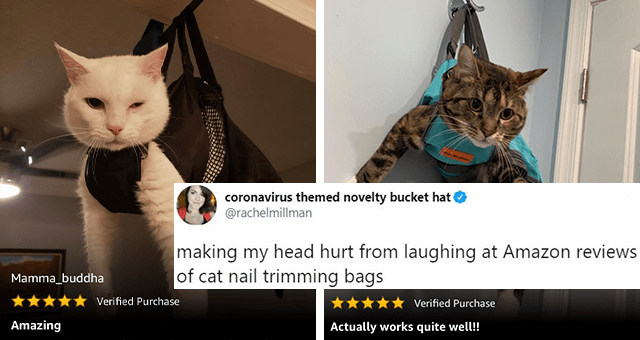 tweets about funny Amazon cat nail trimming bag reviews thumbnail includes two pictures of annoyed cats inside of nail trimming bags and a tweet 'Product - coronavirus themed novelty bucket hat @rachelmillman making my head hurt from laughing at Amazon reviews of cat nail trimming bags Steve from PA Verified Purchase Actually works quite well! A little bit of maneuvering to get her into the bag. Once in and pass we're popped out she had no issue. I just hung her on the bath towel hook and then '