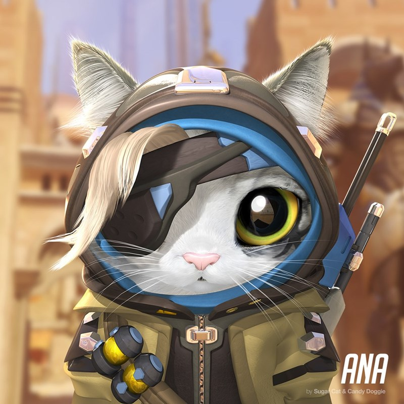 aww,overwatch,video games,Cats