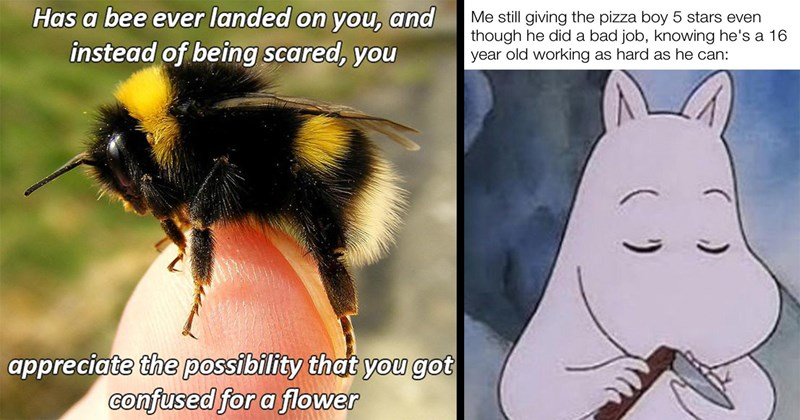 wholesome memes, funny memes, wholesome, feel good, aww, cute memes, memes, uplifting | Has bee ever landed on and instead being scared appreciate possibility got confused flower | still giving pizza boy 5 stars even though he did bad job, knowing he's 16 year old working as hard as he can: made with mematic Moomin folding a knife