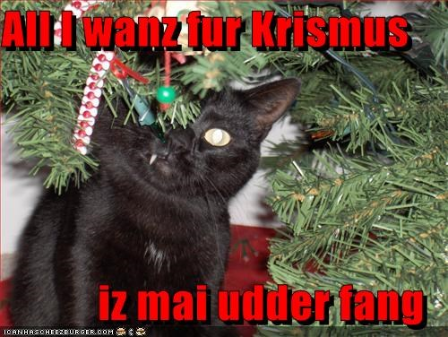christmas fang lolcats present tree want - 1354654976