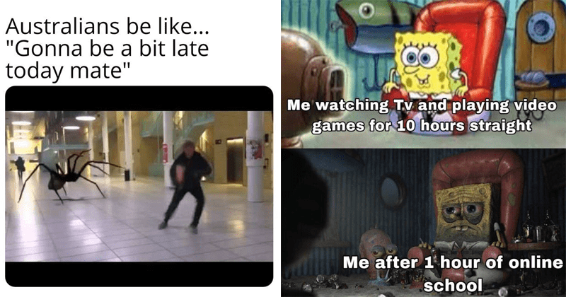 Funny random memes, dank memes, reddit, lol, dank drop, gaming, wall street, stonks | Australians be like Gonna be bit late today mate person running away from a giant spider | watching Tv and playing video games 10 hours straight after 1 hour online school Spongebob