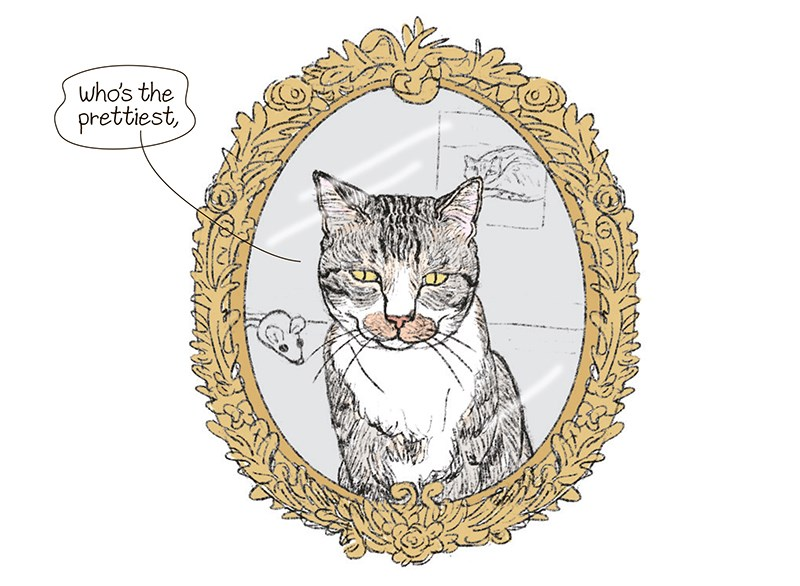 "cat asking the mirror who is the fairest in all the land - thumbnail of cat in mirror "" who's the prettiest"""