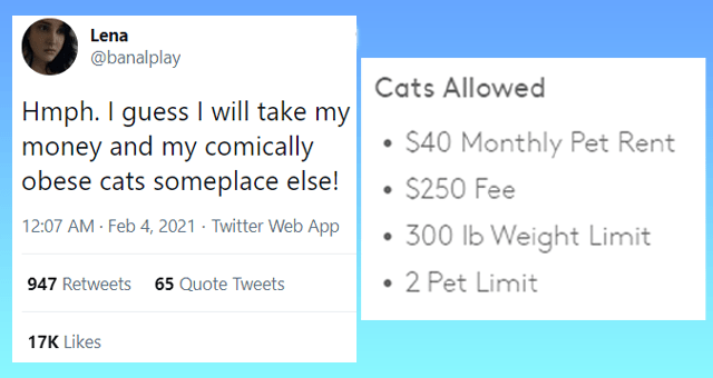 funny tweets about pet rent thumbnail includes one tweet 'Font - Lena ... @banalplay Hmph. I guess I will take my money and my comically obese cats someplace else! Cats Allowed $40 Monthly Pet Rent $250 Fee • 300 lb Weight Limit • 2 Pet Limit 12:07 AM · Feb 4, 2021 · Twitter Web App 947 Retweets 65 Quote Tweets 17K Likes'
