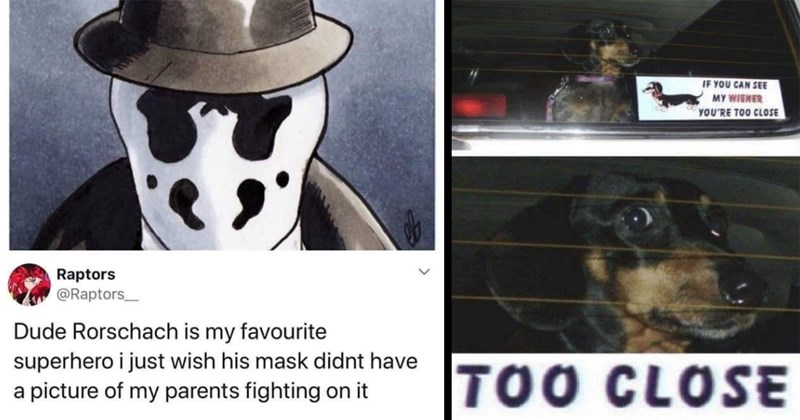 random memes, funny memes, meme dump, dank memes, relatable memes, memes, funny, funny tweets, twitter memes, stupid memes | Raptors @Raptors_ Dude Rorschach is my favourite superhero just wish his mask didnt have picture my parents fighting on | IF CAN SEE MY WIENER TOO CLOSE TOO CLOSE dog in car