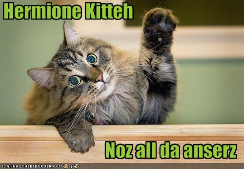 answer Harry Potter hermione know it all lolcats smart - 1359874304