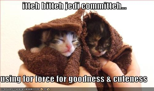 itteh bitteh jedi committeh...  using for force for goodness & cuteness