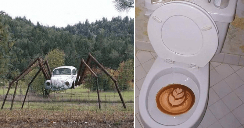 Weird and cursed images from the far reaches of the internet | old car with spider legs | coffee art in a toilet bowl