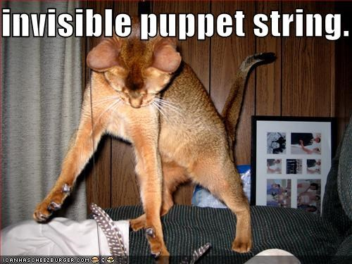 Invisible Puppet String Cheezburger Funny Memes Funny Pictures