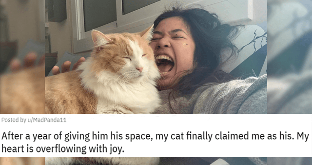 reddit posts about aloof cats choosing their humans after a long time of living together thumbnail includes a picture of a cat lying on a really happy girl 'Nose - Posted by u/MadPanda11 3 days ago O 928 S 7 32 After a year of giving him his space, my cat finally claimed me as his. My heart is overflowing with joy'