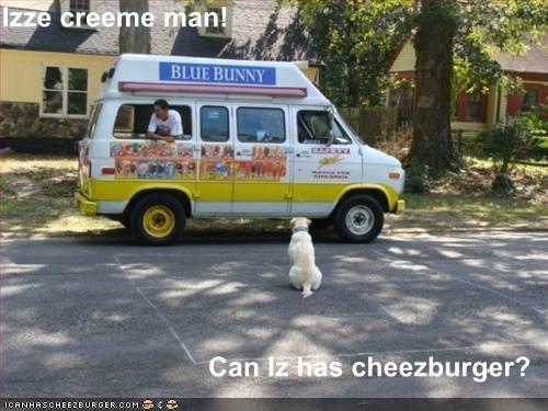 Cheezburger Image 1361271040