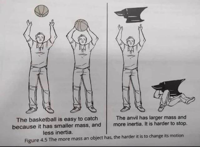 memes and jokes so bad and unfunny they ascended went to comedy heaven rip not funny cringe | basketball is easy catch because has smaller mass, and less inertia anvil has larger mass and more inertia is harder stop. Figure 4.5 more mass an object has harder is change its motion
