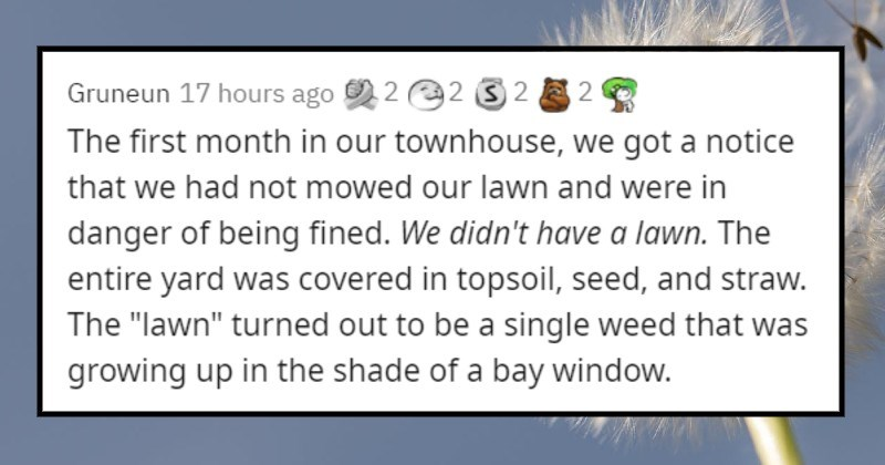 """strict and frustrating homeowner's association rules. 