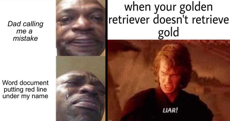 random memes, funny memes, meme dump, dank memes, shitposts, stupid memes, dumb memes, good memes, memes, lol, funny, animal memes | Dad calling mistake Word document putting red line under my name black man crying | golden retriever doesn't retrieve gold LIAR! imgfip.com Anakin Star Wars