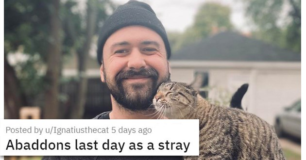 "all the newly adopted rescue animals of the week - thumbnail of man with newly adopted stray cat ""Abaddons last day as a stray"""
