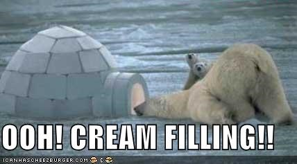 bear,cream filling,igloo,lolbear,lolbears,nom nom nom,polar bear,polar bears