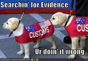 doin it wrong labrador - 1364804864