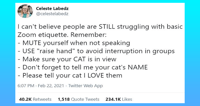 "this week's collection of cat tweets thumbnail includes one tweet 'Font - Celeste Labedz @celestelabedz I can't believe people are STILL struggling with basic Zoom etiquette. Remember: - MUTE yourself when not speaking - USE ""raise hand"" to avoid interruption in groups - Make sure your CAT is in view - Don't forget to tell me your cat's NAME - Please tell your cat I LOVE them 6:07 PM · Feb 22, 2021 - Twitter Web App 40.2K Retweets 1,518 Quote Tweets 234.1K Likes'"