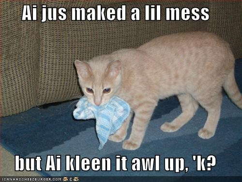 cleaning,destruction,lolcats,mess,nice,oops