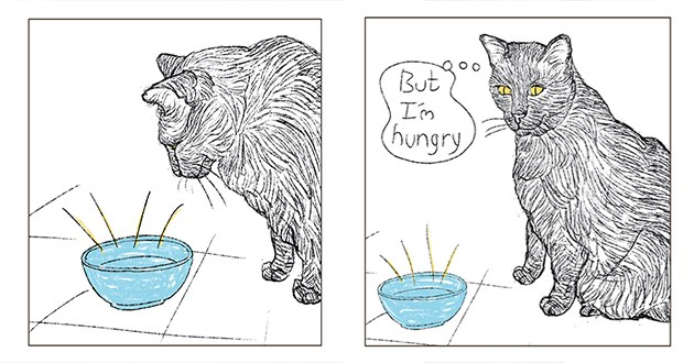 "cat with empty food bowl dreams about eating - thumbnail of cat looking at empty food bowl and saying ""im hungry"""