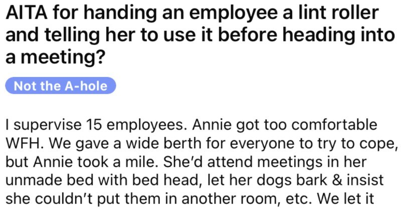 Supervisor demands that an employee use a lint roller before the meeting.