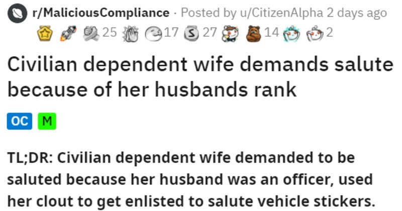 Military officer wife Karen wants salutes, everyone starts saluting cars instead