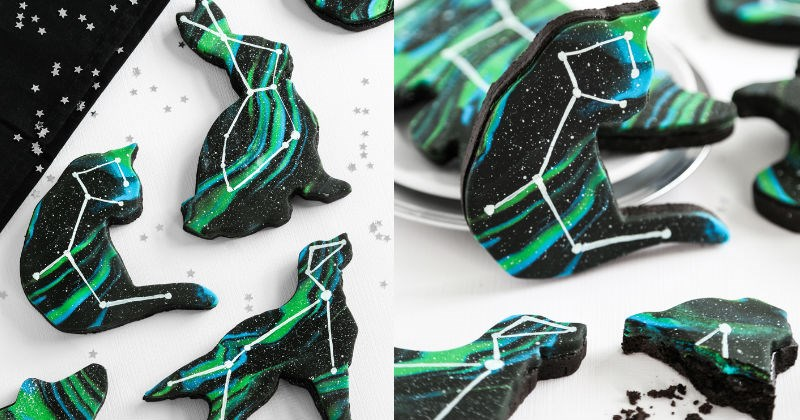 baking constellation space animals cookies food - 1377285