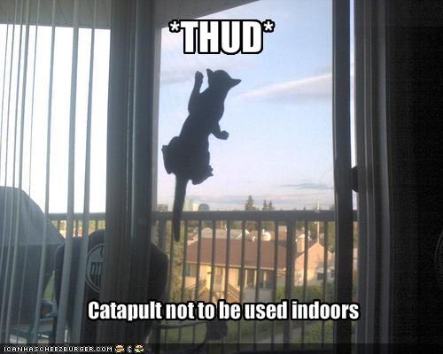 catapult crash lolcats thud