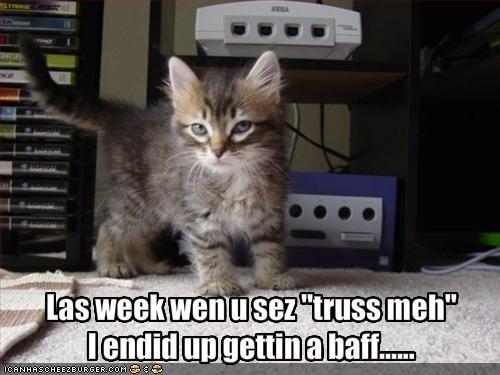 bath,cute,kitten,lies,lolcats,lolkittehs,suspicious,trust