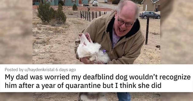 "pics and vids of the cutest animals of the week - thumbnail of man smiling happily with equally happy dog ""My dad was worried my deafblind dog wouldn't recognize him after a year of quarantine but I think she did"""""