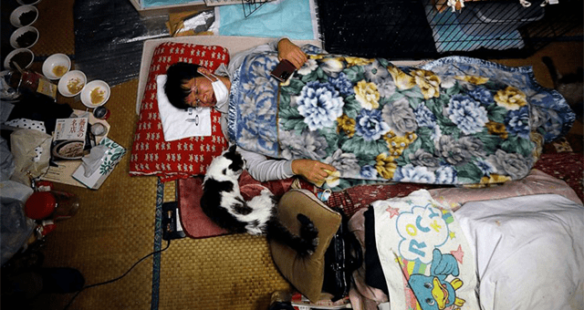 story about a man who saves cats in the Fukushima nuclear zone thumbnail includes a picture of a Japanese man lying on the floor next to a cat