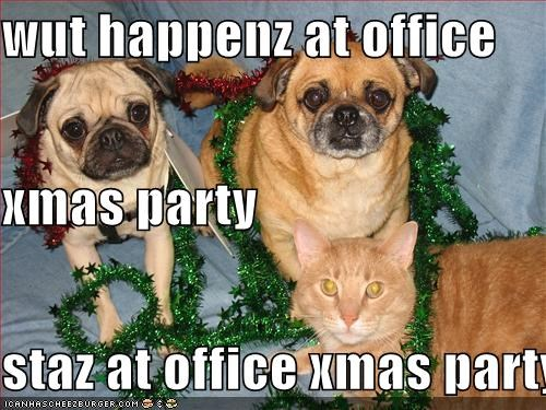 christmas lolcats Party pug work - 1383606016