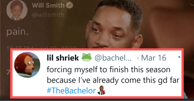 Funniest Memes Roasting 'The Bachelor' Finale Like A Damn Marshmallow| thumbnail text - - Will Smith @willsmith pain. lil shriek @bachel... · Mar 16 forcing myself to finish this season because l've already come this gd far 7 #TheBachelor.