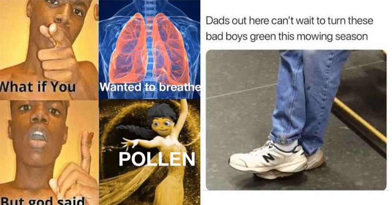 Funny and relatable memes about spring, seasonal allergies, allergy memes, pollen, vernal equinox, spring solstice