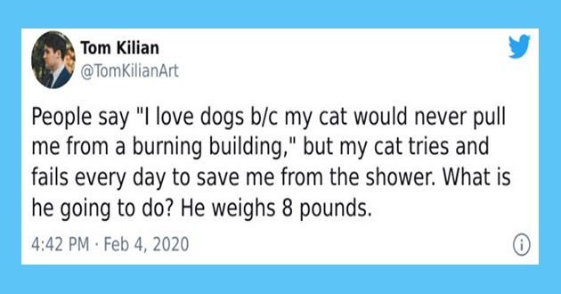 "dog people vs cat people tweets - thumbnail of tweet ""People say ""I love dogs b/c my cat would never pull me from a burning building,"" but my cat tries and fails every day to save me from the shower. What is he going to do? He weighs 8 pounds."""