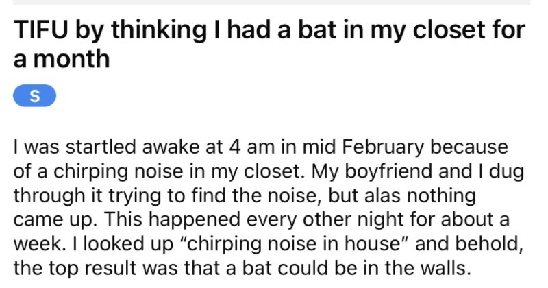 A tenant assumes that they have a bat in their closet, and then they learn otherwise.