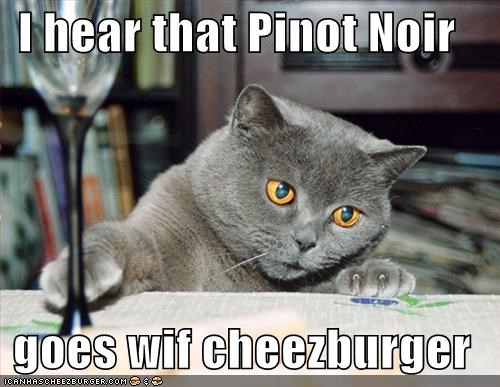 Cheezburger Image 1391004928