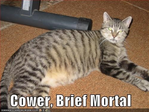 Cower, Brief Mortal