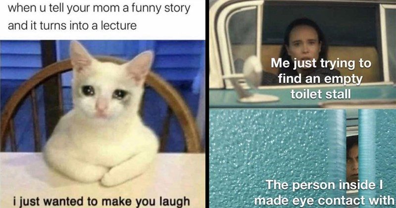 random memes, meme dump, funny memes, relatable memes, dumb memes, dank memes, funny tweets, twitter memes, funny, lol, star wars, the office, animal memes