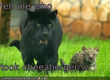 Cheezburger Image 1394840320