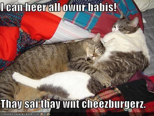 Cheezburger Image 1395091200