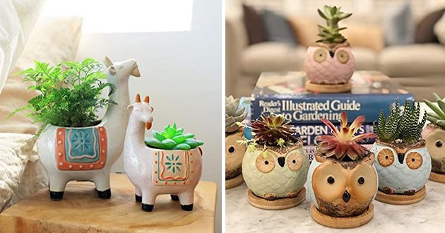 mini succulent pots featuring animals for spring - thumbnail of goats succulent pots and owls