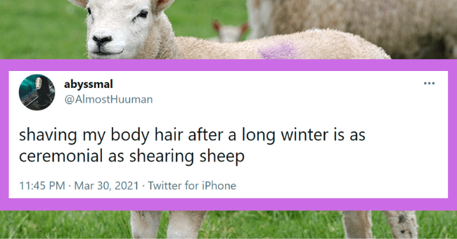Funny tweets about the struggles of body hair | thumbnail text -