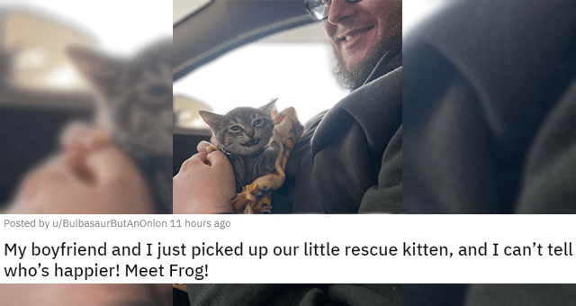 posts of animals newly adopted this week thumbnail includes a picture of a guy holding a smiling cat 'My boyfriend and I just picked up our little rescue kitten, and I can't tell who's happier! Meet Frog! u/BulbasaurButAnOnion'