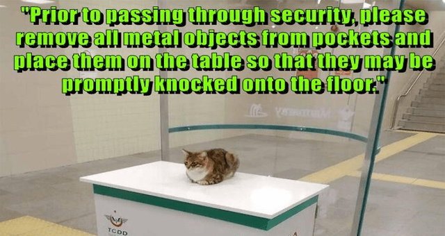 "ichc original cat memes lolcats thumbnail includes one meme of a cat sitting at a greeting desk 'Cat - ""Priorto passing through security, please remove al metalobjects from pockets and place themon the table so that they may be promptly knocked onto the floor. TCDD GÜVENLİK Marmaray SECURITY ARAMA - KONTROL NOKTASI Marmary'"