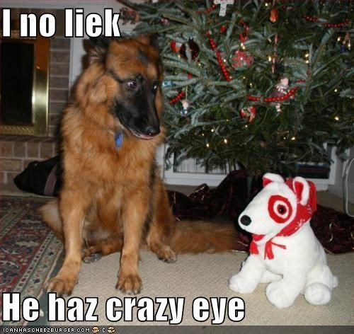 christmas,crazy,do not want,german shepherd,scared,stuffed animal,tree